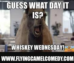 Alfred Meme - alfred whiskey wednesday days of the week pinterest