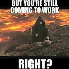 Star Wars Funny Meme - but you re still coming to work right star wars pinterest