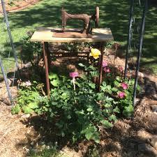 australian native plants for rock gardens video and photos gardens of the downs home facebook