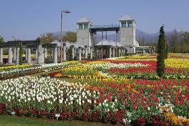 gunma flower park sightseeing tourist guide of gunma