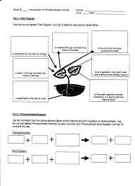 cellular respiration and photosynthesis worksheet the best worksheets image collection and share worksheets