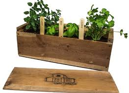 indoor herb garden kit with light where to buy indoor herb garden