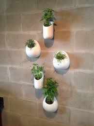 Decorative Indoor Planters Indoor Decorative Plant Pots Techethe Com