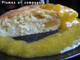 tele 7 jours recettes cuisine gâteau d abricots et poires et coulis d abricots plumes et compagnie