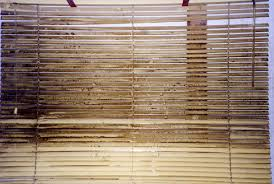 How To Clean Greasy Blinds A Clean Scene How To Clean Your Window Treatments Behome Blog
