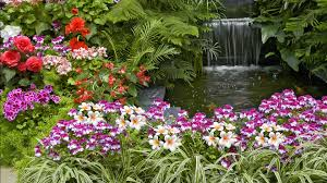 beautiful flower gardens waterfalls with ideas inspiration 138599