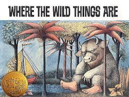 17 wild images wild