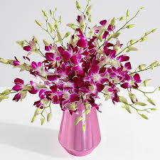 Image For Flowers Orchid Flower Delivery Proflowers