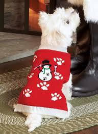 pet sweaters pet sweaters carolwrightgifts com