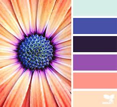 Beautiful Color Combinations The 25 Best Color Combos Ideas On Pinterest Color Combinations