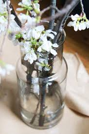 Branches In A Vase Diy The Magical Powers Of White Cherry Blossoms Gardenista