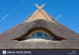 horses heads as gable ornaments thatched roof ahrenshoop stock
