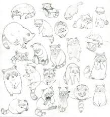 how to draw a raccoon eating free download clip art free clip