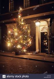 number 10 downing front door and tree