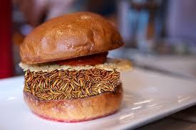 european cuisine eu standardizes edible insect boing boing