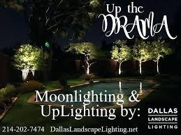 Landscape Lighting Techniques Moon Lighting Landscape A Combination Of Landscape Lighting