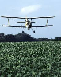 Methods Of Controlling Plant Diseases - pest control wikipedia