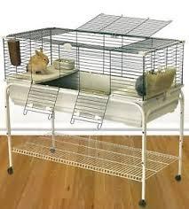 gabbie per conigli nani usate robin 120 beige verde gabbia per conigli nani e cavie con supporto