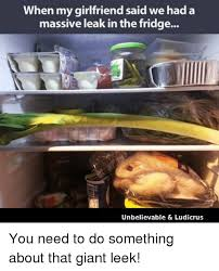 Leek Meme - when my said we had a girlfriend massive leak in the fridge