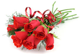 roses flowers roses flowers 7000x4820