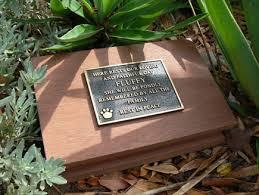 cat caskets 17 best images about dog coffin pet headstones pet memorials and