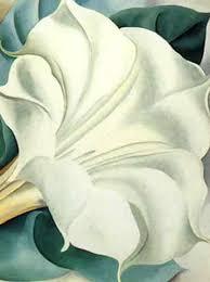 White Trumpet Flower - white trumpet flower georgia o u0027keefe