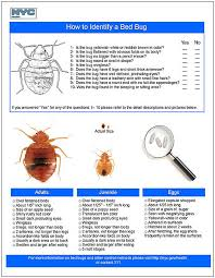 How To Avoid Bed Bugs Bed Bug Service Erie County Buffalo Amherst Hamburg Niagara Falls