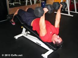 Good Weight For Dumbbell Bench Press Bench Press Analysis
