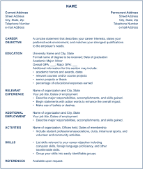 Chronological Resume Format Example by Sample Chronological Resume Chronological Resume Template Sample