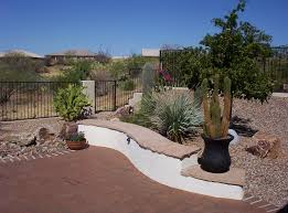 native plant landscaping native plants for a southwest garden santa rita landscaping