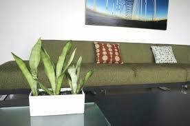 modern planters indoor u2014 randy gregory design wonderful