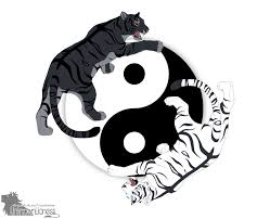 tiger yin yang by unknownlioness on deviantart