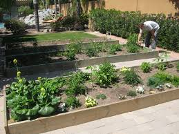 Building A Vegetable Garden Box by Sweet Life Garden Gardening In A Box