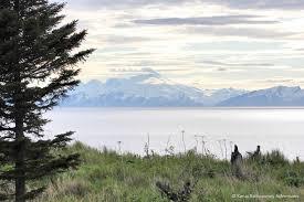 Alaska traveling insurance images Resources kenai backcountry adventures jpg