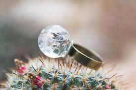 Snowflake Flower - ring snowflake flowers snow u0026 rose