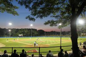 cape cod league is logical next step for former local standouts