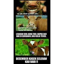 Meme Babi - meme comic palembang memecomicpalembang instagram photos and