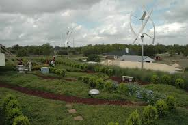 houston native plants green roofs save money energy but challenge texas plants