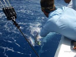barbie punta cana dominican republic fishingbooker