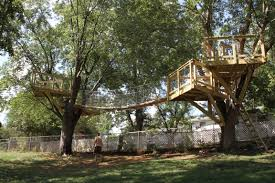 Tree House Plans For Two Trees Interior Design