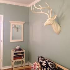 love this color for my office maybe new paint job color is