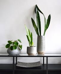 Wohnzimmer Einrichten Pflanzen Funvit Com Spielzimmer Einrichten