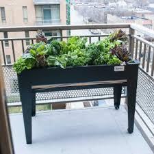 raised planter boxes hayneedle