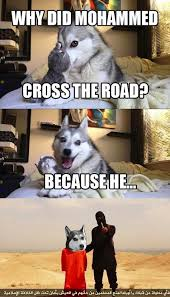 Pun Husky Meme - poor guy pun dog know your meme