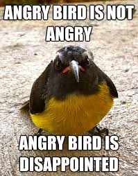 Angry Bird Meme - angry bird is not angry angry bird is disappointed disappointed