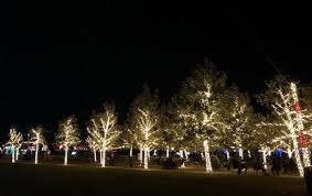 philips hue christmas lights backlights buttons
