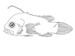 coloring strange fish