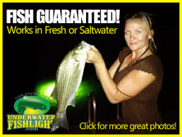 portable underwater fishing lights green underwater lights best prices attract fish green dock lights