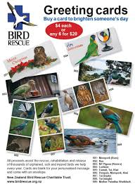 nz bird rescue greeting cards new zealand bird rescue charitable