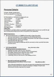 resume exles india formation resume interests exles exles of resumes